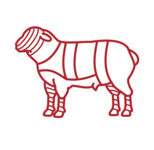 Picto agneau & mouton