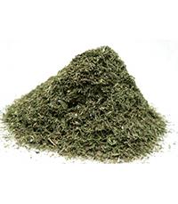 aneth en feuilles